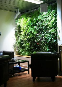 living wall planters by Living Walls, via Flickr ...have to invest in some intensive lighting.  Or this would work fabulously in my someday-doesn't-exist conservatory wall.  : P