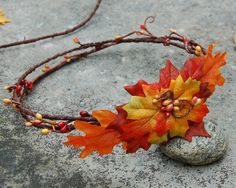 Autumn Fairy Wings and Crown Set