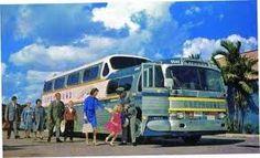 Charter Bus, greyhound scenicruiser, motorcoach