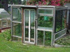 recycled window greenhouse- extend growing season using passive heating techniques Recycled Windows, Old Windows, Windows And Doors, Reclaimed Windows, Salvaged Wood, Sliding Windows, Vinyl Windows, Vintage Windows, House Windows
