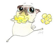 InkPug! Buttercup