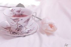 .Tea and cup with birds, two favorite things together!