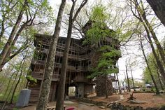 Top 8 coolest treehouses on the world