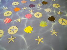 30 Piece Set Under the Sea 10 Sand Dollars 10 Star Fish by ang744, $2.25