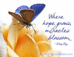 """Where Hope Grows, Miracles Blossom"" Word-Art Freebie and a link to a page of freebies like this one!  From Deb Chitwood!"