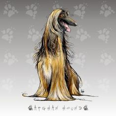 New Afghan Hound Prints Available - John LaFree - Fine Art Blog