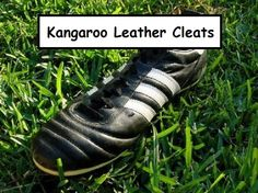 #Kangaroo #Leather soccer #cleats – Which should I pick? Leather soccer cleats are good, to find more about them check at http://cleatsreport.com/kangaroo-leather-soccer-cleats-which-should-i-pick/