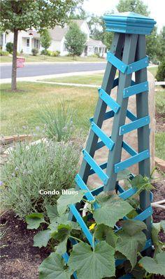 Condo Blues: Companion Planting