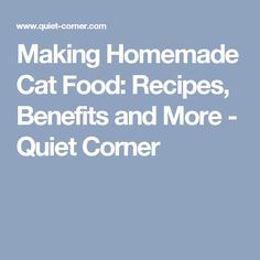 Making Homemade Cat Food: Recipes, Benefits and More - Quiet Corner