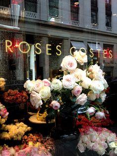 'Roses Costes Dani Roses'...Paris Rose shop