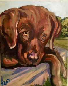 """Artist: Elizabeth Warner Dimensions: 20""""x16""""x1.5"""" Original Animal - Dog Medium: Acrylic Surface: Canvas For more information email us at christenberrycollection@gmail.com"""