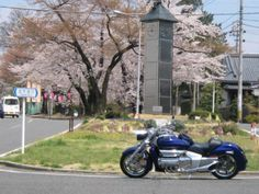 Honda Rune with Cherry tree