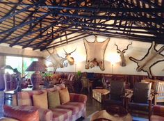 The historic living room of the Mala Mala Game Reserve in #SouthAfrica. www.travelifemagazine.com #safari #adventure #decor #Africa #travel