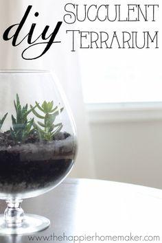 Easy DIY Succulent Terrarium tutorial