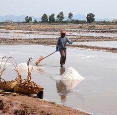 Recolectora de sal en Kampot (Camboya)