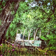 """#abandoned #ghosttown  Photo by @veraviola_vintage on Instagram"