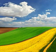 """Yellow ribbon ~ Katarina 2353 @ flickr   ~ The Pannonian Plain ~ """"The plain is divided among Austria, Bosnia and Herzegovina, Croatia, the Czech Republic, Hungary, Romania, Serbia, Slovakia, Slovenia and Ukraine.    The plain is roughly bounded by the Carpathian mountains, the Alps, the Dinaric Alps and the Balkan mountains"""""""