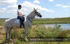 Trekking & Trial Rides with Moycullen Riding Centre Trail Riding, Horse Riding, Riding Holiday, Horse Fly, Riding Lessons, Best Pal, Connemara, All The Pretty Horses, Stables