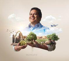 Spetacular Illustrations of Peru