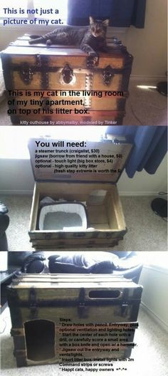 Upcycle. Old trunk to hide litter box