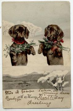 Vintage Holiday Doxie postcard