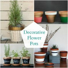 Use the free chalk board paint from the recycle place.  Decorative Flower Pots