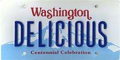 Washington Car Tags, License Plates, Washington, Road Trip, Celebrities, Car License Plates, Celebs, Road Trips, Number Plates