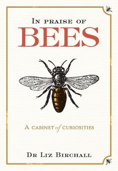 A fascinating  comprehensive book exploring the bees place in human society from prehistoric cave paintings through to our contemporary world - a cabinet whose drawers are filled with nuggets of bee science and practical #Bienen www.apidaecandles.de