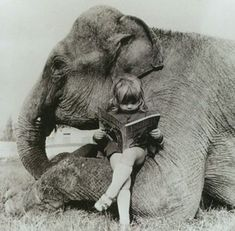 elephant & little girl reading from Snippet & Ink