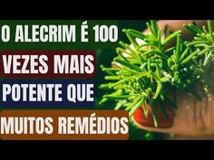 Gym Workout Tips, Fitness Tips, Medicine, Lose Weight, Herbs, Health, Food, Lair Ribeiro, Youtube