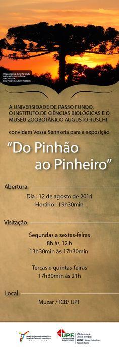 Grupo Ecológico Sentinela dos Pampas: Do pinhão ao Pinheiro