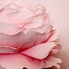 Cabbage Rose: A near replica in color and form of a beautiful cabbage rose. This piece took approximately 35 hours from start to finish. Made of Italian crepe paper by Tiffanie Turner.