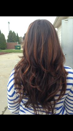 Brown with chestnut highlights