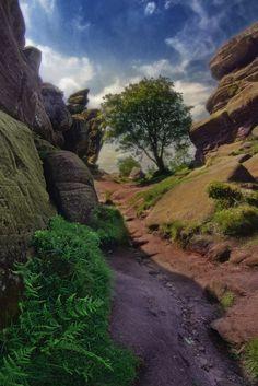 Tangent Universe - Brimham Rocks, Harrogate, Yorkshire, England, by Ian Hex of www.LightSweep.co.uk #BrimhamRocks #Yorkshire #Travel #England