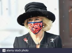 Berlin, Germany. 15th Nov, 2020. Camilla, Duchess of Cornwall, at the reception at the Federal President of Germany in Bellevue Palace on November 15, 2020 in Berlin, Germany Credit: Geisler-Fotopress GmbH/Alamy Live News Stock Photo Camilla Duchess Of Cornwall, Live News, Berlin Germany, Palace, Presidents, Law, November, Reception, Stock Photos