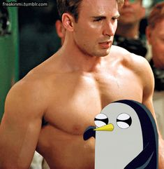 Gunter Rubbing All Up Against The Avengers - 6 Gifs Adventure Time Gunter, Adventure Time Funny, Wattpad, Bucky Barnes, Laughing So Hard, Marvel Movies, Chris Evans, Really Funny, Tumblr Funny