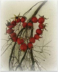 Decori al naturale - by Delia - Furighedda gardening