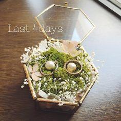 いいね!29件、コメント4件 ― @ikmm_wedのInstagramアカウント: 「いよいよ搬入日です。 本当に不器用で後回しにし続け、 やっつけで作ったリングピロー。 もっと余裕を持ってやればよかったです(´;ω;`) #リングピロー #ガラスケース #マライカ…」
