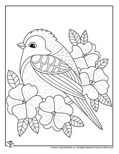 Spring Bird and Flowers Coloring for Teens Spring Coloring Pages, Bird Coloring Pages, Pattern Coloring Pages, Mandala Coloring Pages, Adult Coloring Pages, Coloring Pages For Kids, Coloring Books, Printable Flower Coloring Pages, Spring Drawing