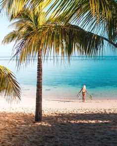 5 Reasons why you should make Mauritius your next holiday destination!