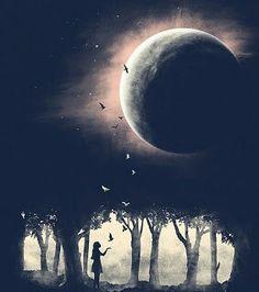 Dreams~the happy places