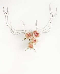 antlers...oh i think i know what I will be painting as a head board piece!!!!