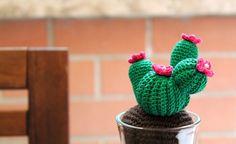 Cactus amigurumi uncinetto Tutorial con spiegazioni in italiano