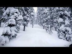 A ski and snowboard movie from the B.C. Rockies.  Filmed at Island Lake Catskiing and Mica Heliskiing by Sherpas Cinema.