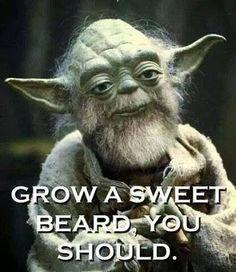 Grow A Sweet Beard, You Should From beardoholic.com