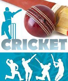 Cricket ! Cricket