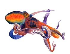 OCTOPUS by DIMDI Original watercolor painting 10X8inch by dimdi