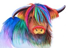 https://www.etsy.com/nl/listing/213961342/highland-cow-art-signed-print-from-an
