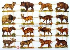 "Vintage Scraps, Cromos ""Wild Animals"" – … - Top Of The World Vintage Paper, Vintage Art, Wild Animals List, Bear Pictures, Die Cut, Animal 2, Victorian Christmas, Vintage Ornaments, Top Of The World"