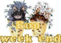 Gifs bon week-end Bon Weekend, Happy Weekend, Week-end Gif, Weekend Images, Bird Gif, Les Gifs, Week End, Teddy Bear, Animation